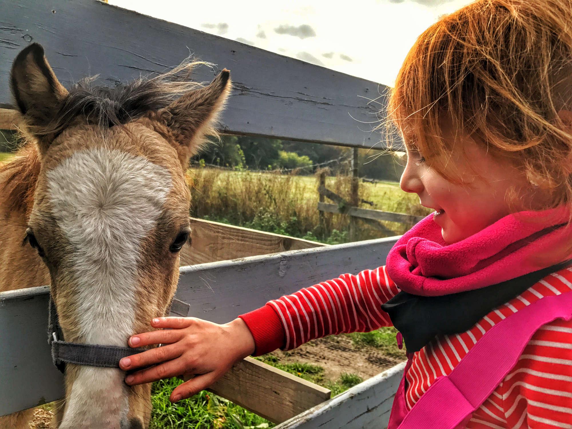 Beitragsbild Hobbies für Kinder. Kind streichelt Pferd
