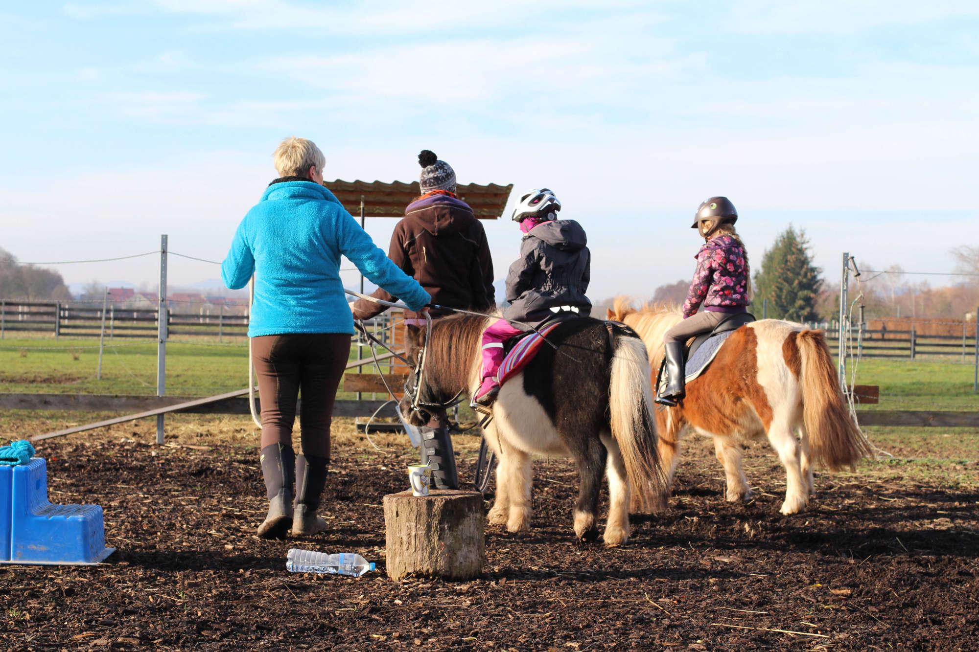 Hobbies für Kinder Gruppe beim Ponyreiten in Lustadt 2