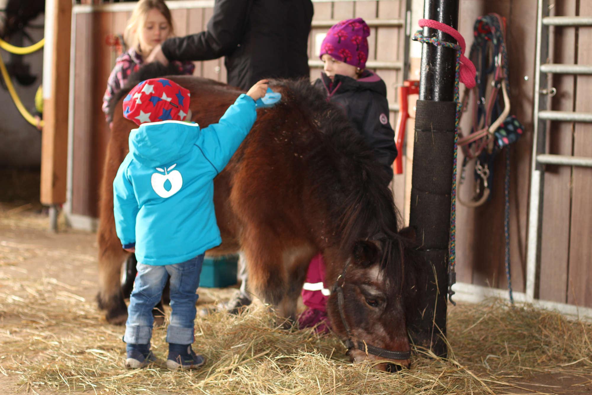 Hobbies für Kinder 2 Kinder putzen ein Pony