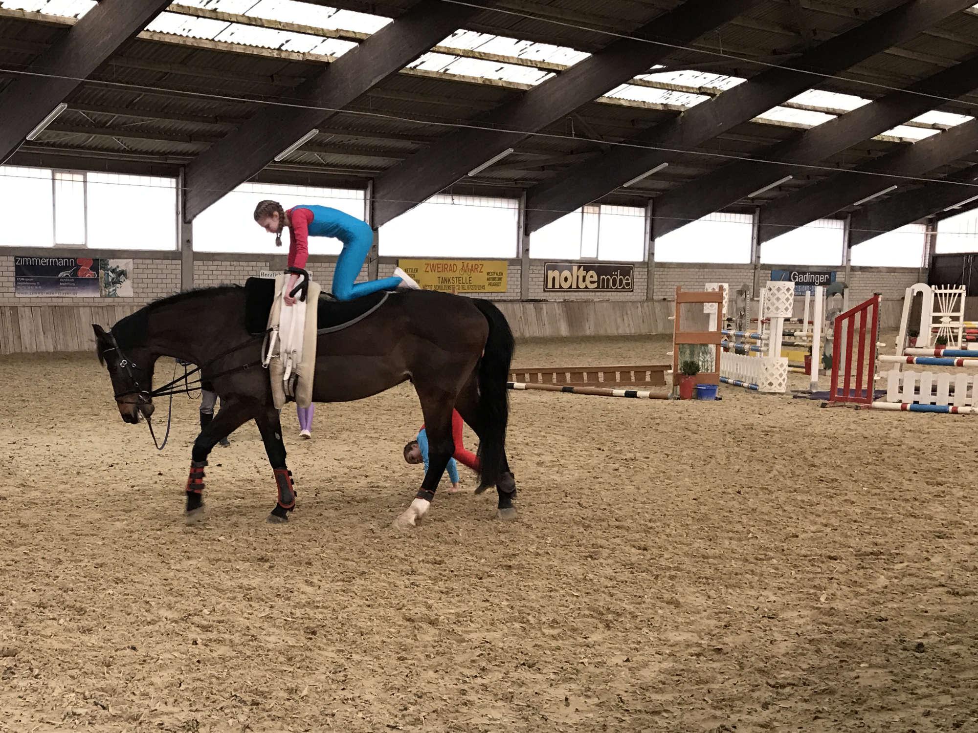 Hobbies für Kinder Voltigieren Kind auf dem Pferd auf allen vieren