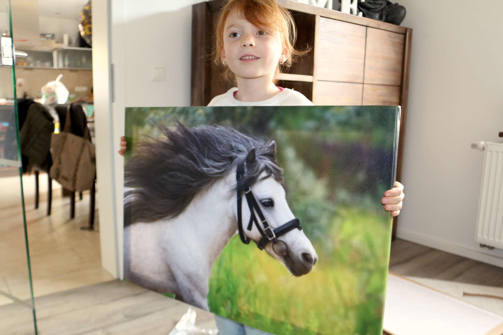Saal Digital Fotoleinwand - Kind hält Bild